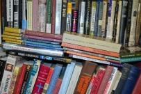 Essayist Bookshelf 2013