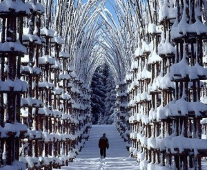 Snow Cathedral by Giuliano Mauri