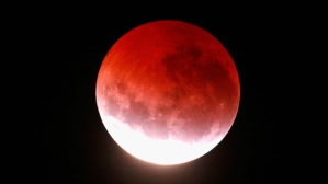 blood-moon-in-auckland-new-zealand