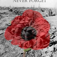 Silence: a Sonnet for Remembrance Day